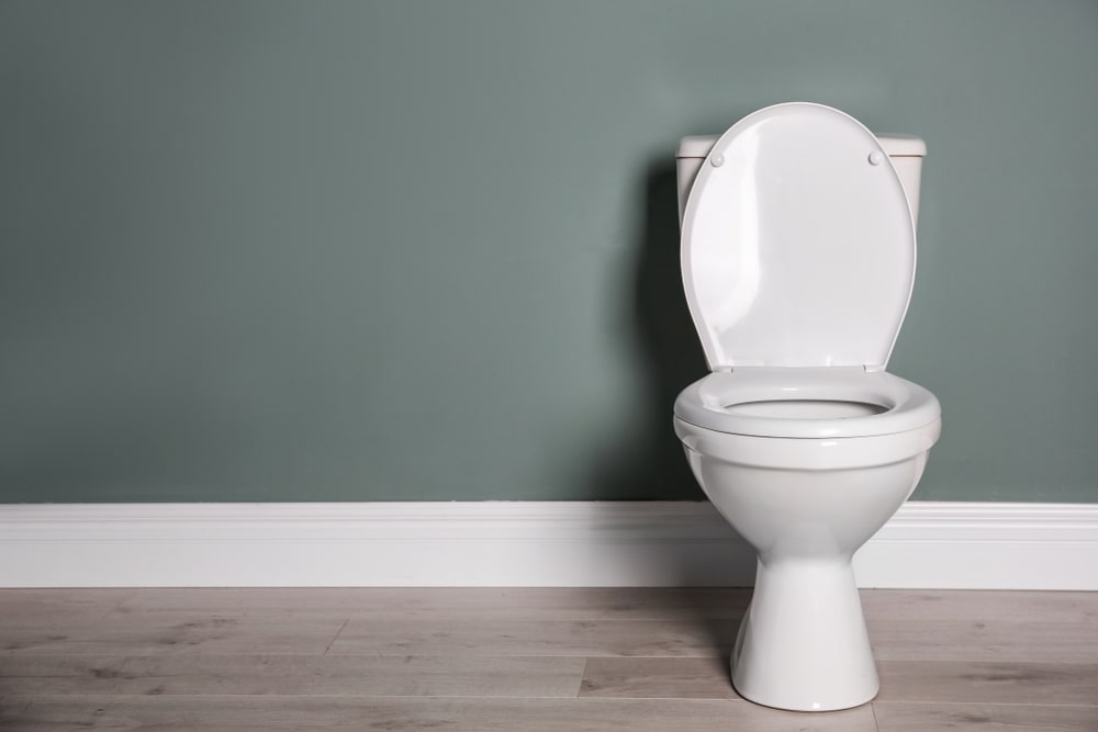 How Much Weight Can a Toilet Hold?